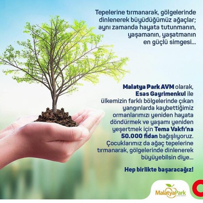 TEMA kampanyasına 50 bin fidan desteği