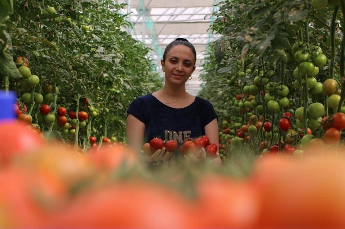 Topraksız tarım hem kadınlara iş kapısı oldu, hem de yılın 10 ayında üretim yapılmaya başlandı