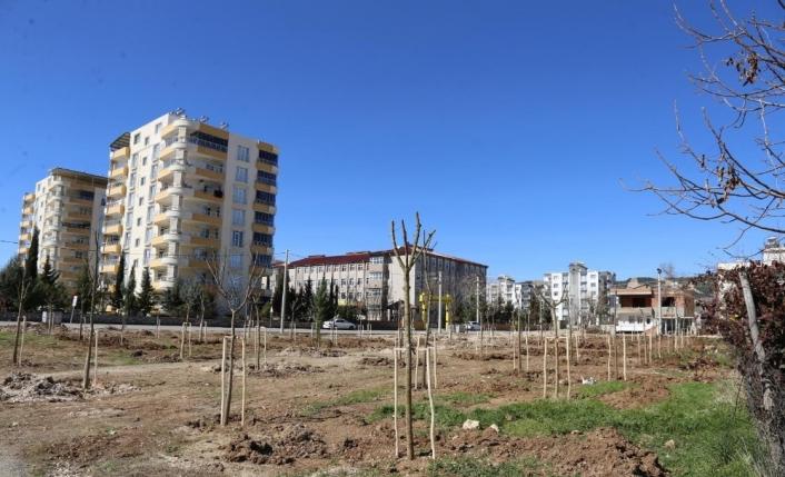 Yeni mahalleye `Mahalle Bahçesi´ yapıldı